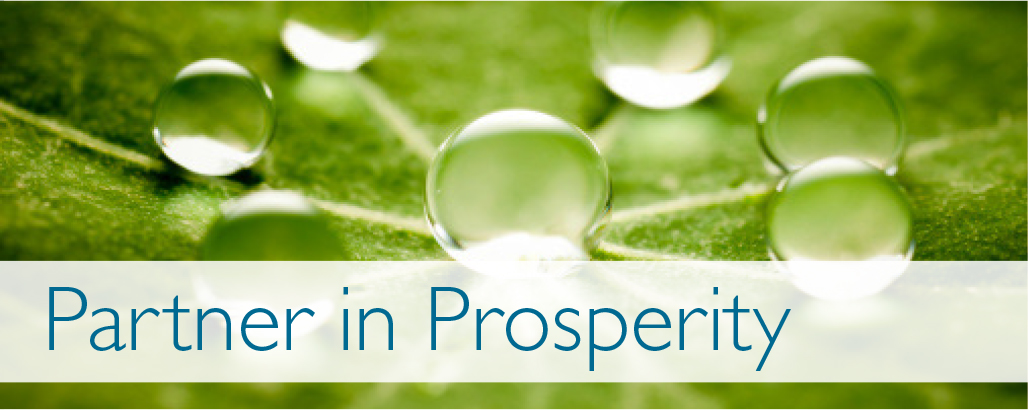 partner-in-prosperity