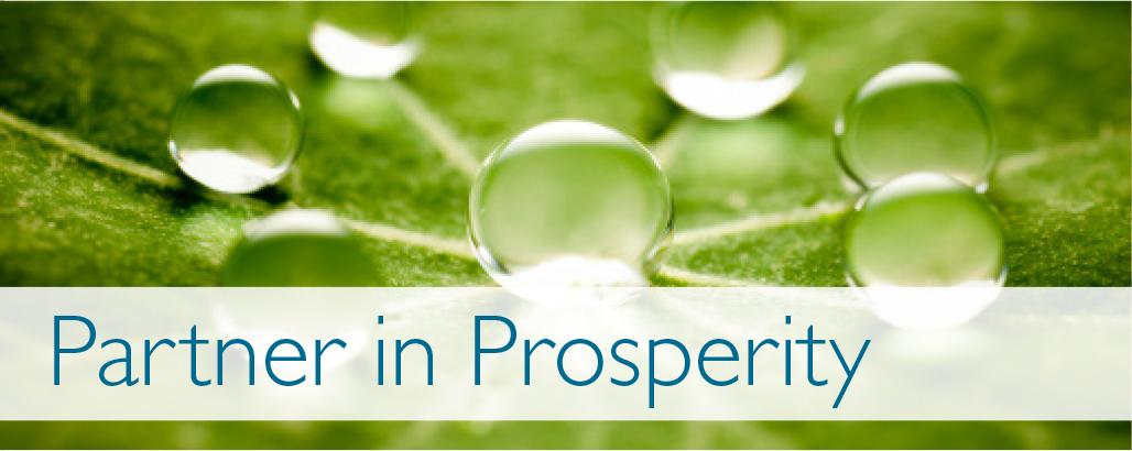 partner-in-prosperity